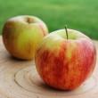 Uwaga na najbardziej zanieczyszczone warzywa i owoce