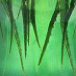 Napój Very Aloe – letnia nowość od marki Wosana