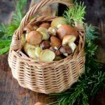 Kulinarne grzybobranie: Z czym najlepiej łączyć grzyby?