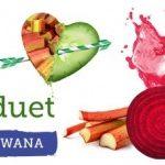 Poznaj dwa letnie smaki soków Marwit