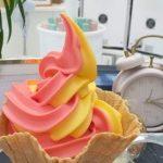 Wegańskie smaki w lodziarni Ice Dream